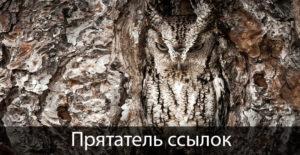 Плагин WP прятатель ссылок